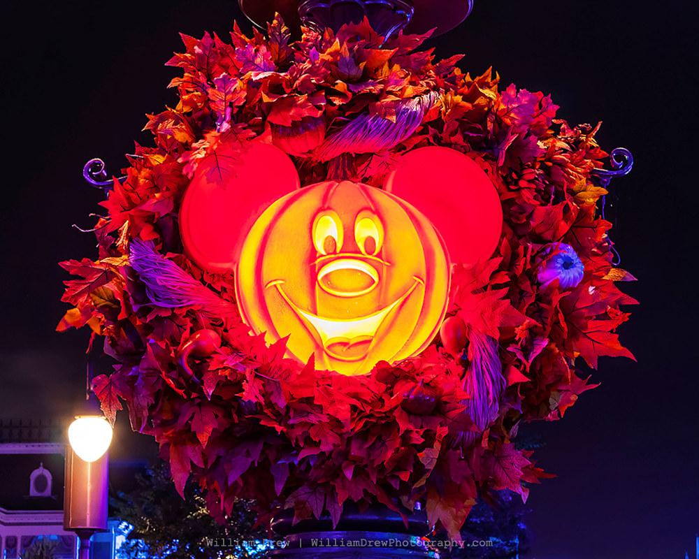 Halloween at Disney World 2 - MNSSHP Photos | William Drew Photography