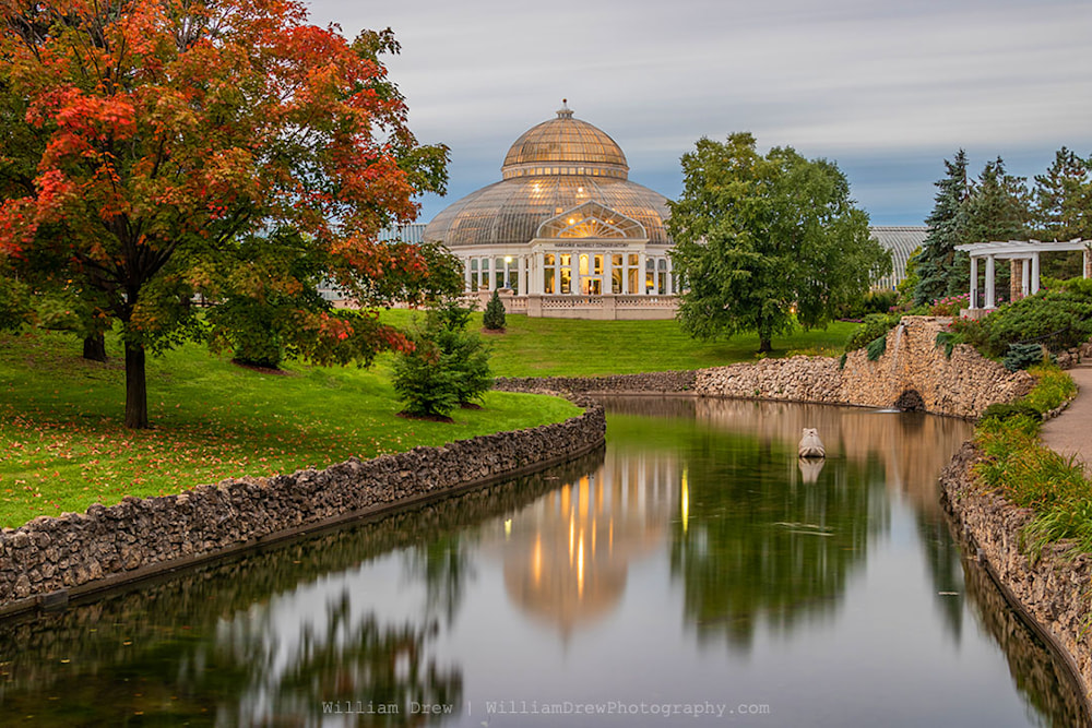 Marjorie McNeely Conservatory Fall Photography - Como Zoo Photos | William Drew Photography