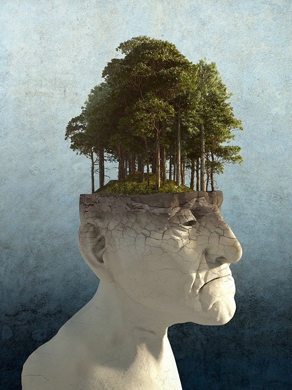 an image of a statue of the bust of an old man, with a thriving forest growing out of the top of his head.