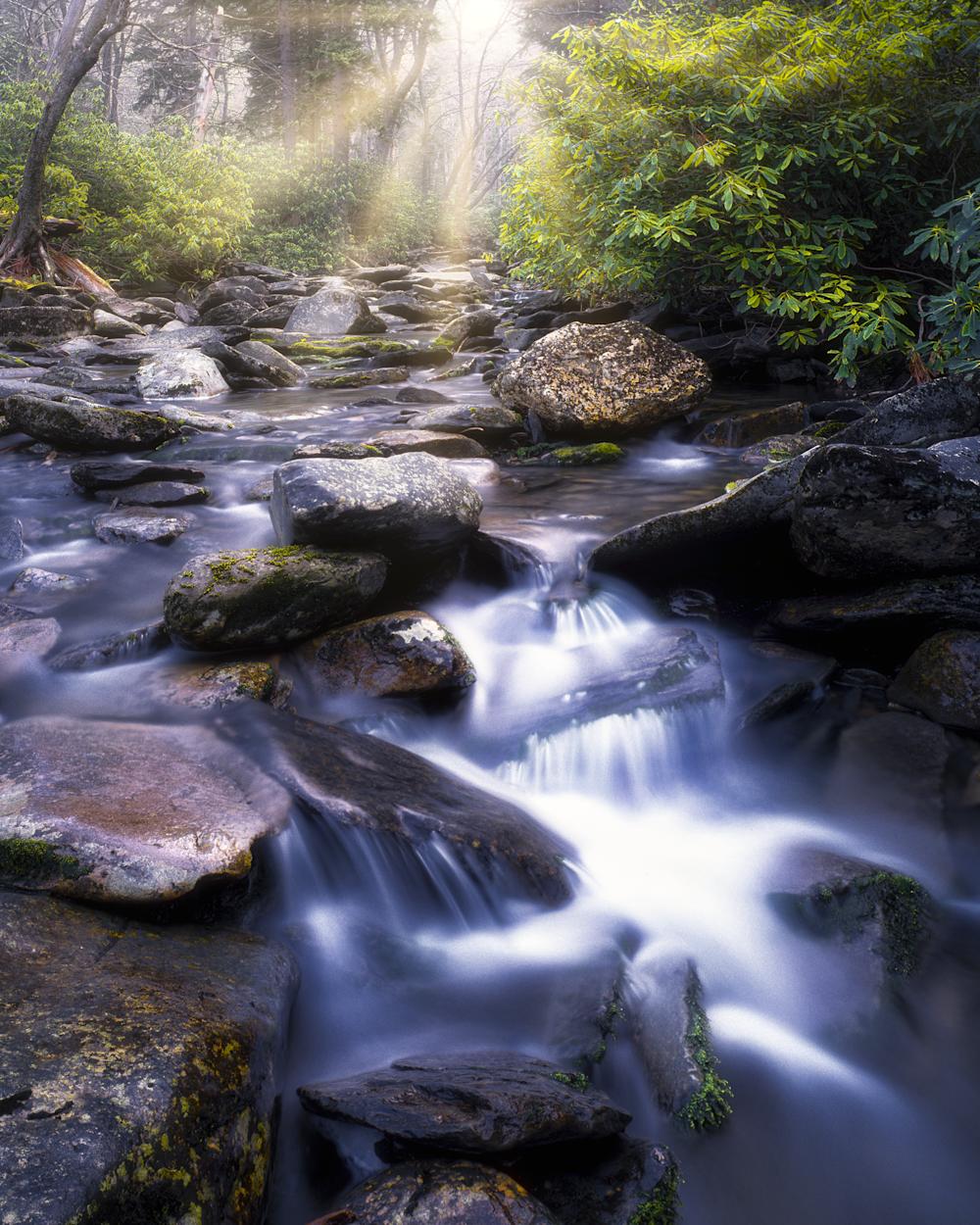 Morning Breaks Through, Great Smoky Mountain National Park