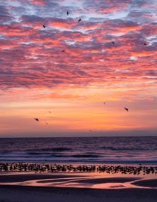 Sunrise, Sea and Sky