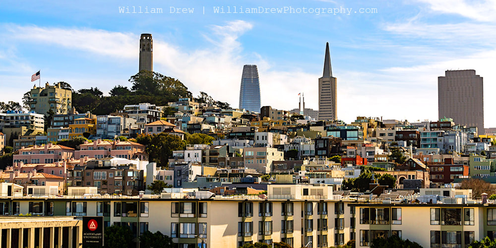 Towering Over San Francisco Photograph