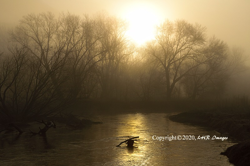 Foggy Morning on the Whitewater River
