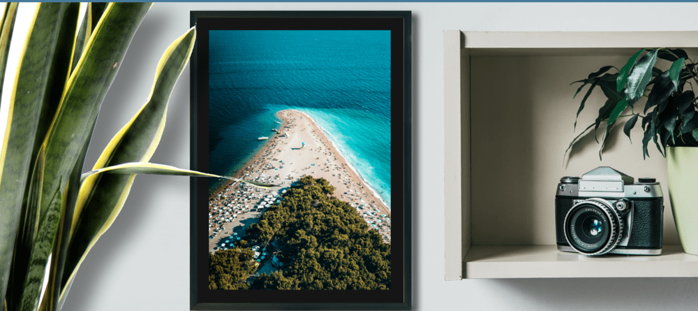 the final photographic paper image showing a camera on a shelve next to a framed and matted beach shot next to a fern