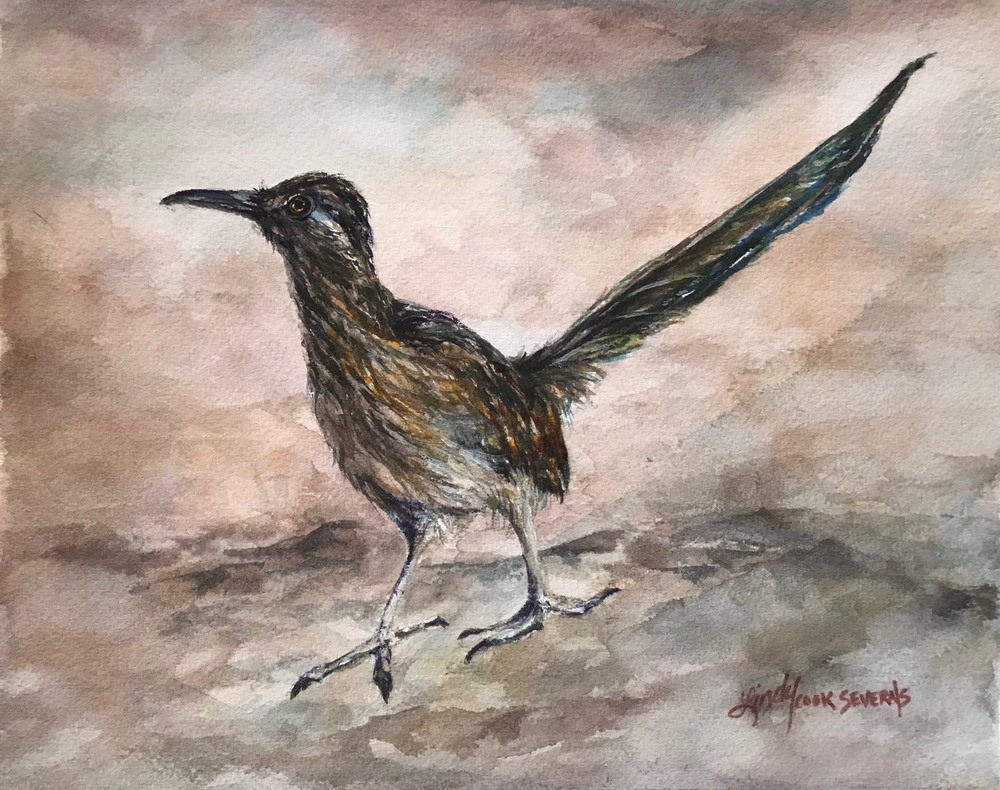 roadrunner watercolor bird