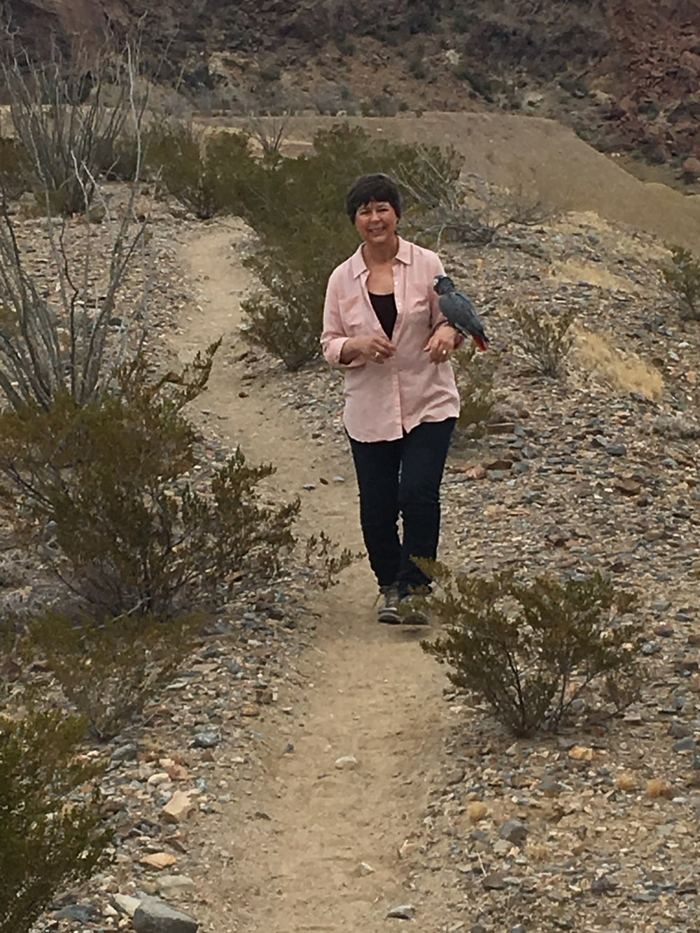 woman hiking thru cactus with parrot