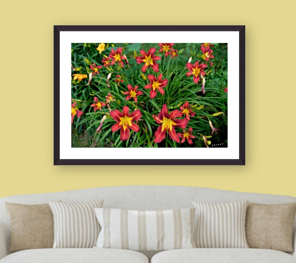 August Lily Wall Decor