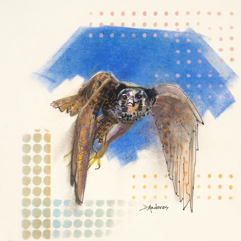 The Falcon by Diana Madaras