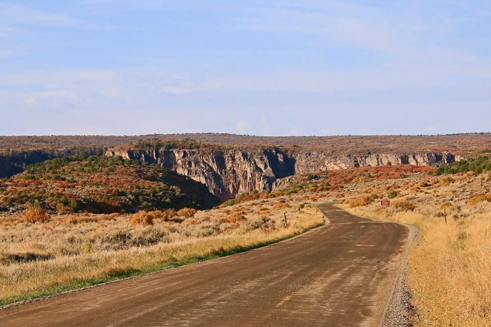 Sagebrush to canyon's edge.