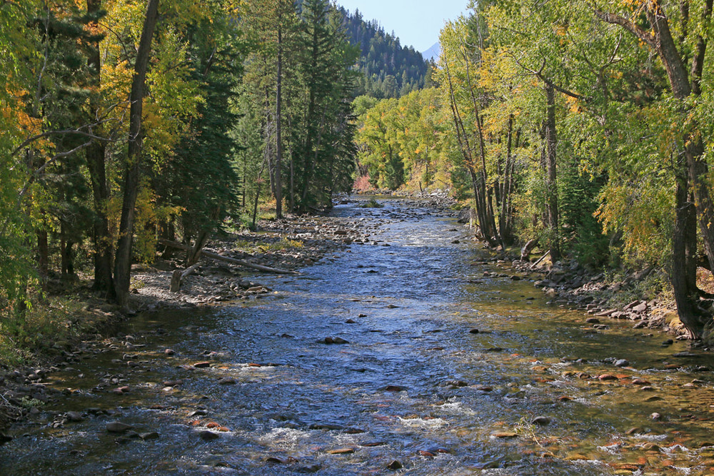 Crystal River, looking upstream.