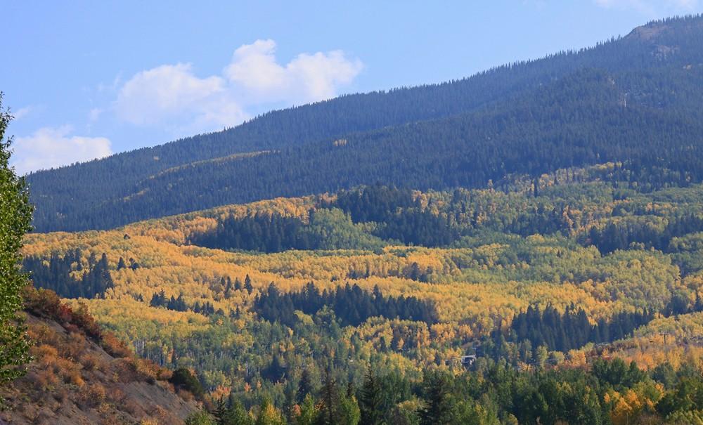 Mountain slope near Aspen, Colorado