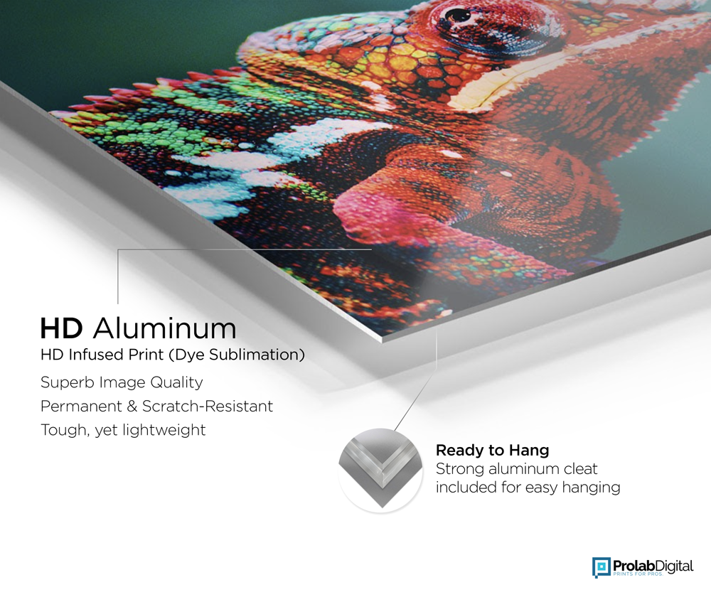 HD Aluminum Infused Print