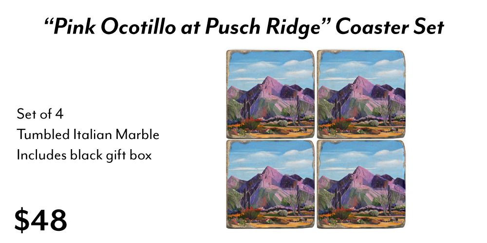 Pink Ocotillo Marble Coaster Set