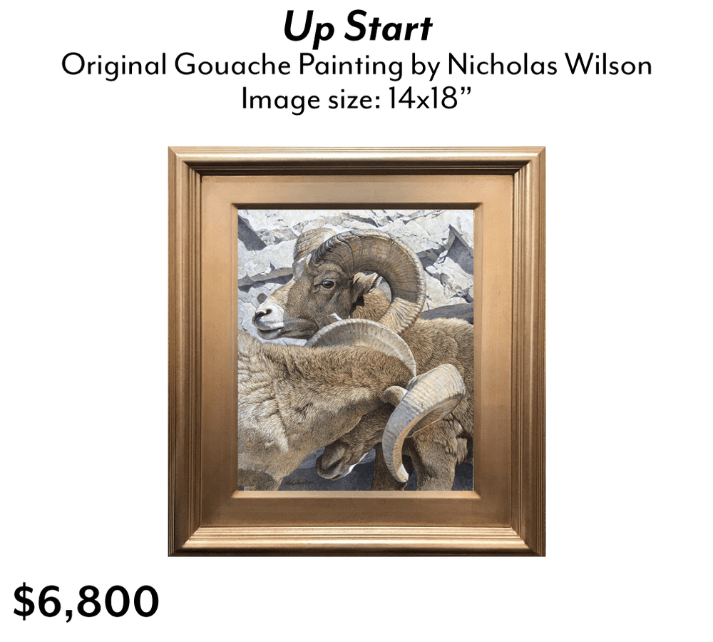 Up Start by Nicholas Wilson