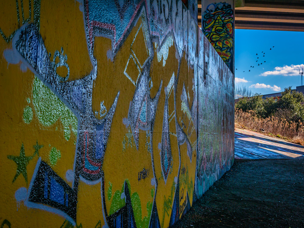 A wall of graffiti in front of a blue sky with birds on Atlanta's Beltline Trail