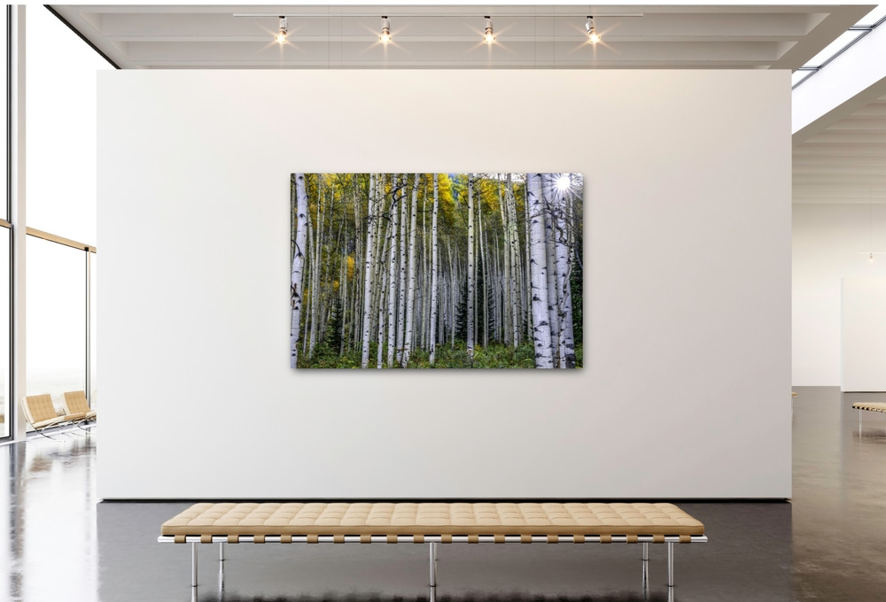 Picture it! My artwork on YOUR walls with Augmented reality. Stand back 10 feet and see my artwork on your interior walls exactly as it will appear