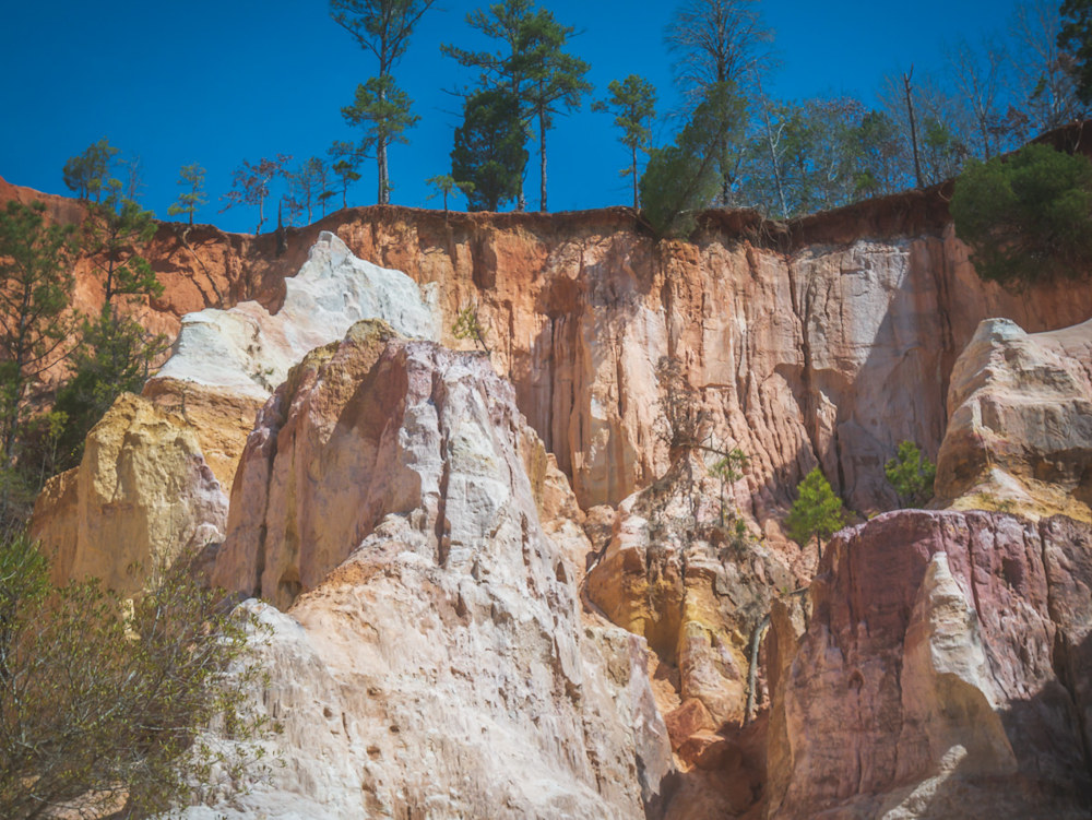 Providence Canyon State Park looking up toward the blue sky from down in one of the canyons
