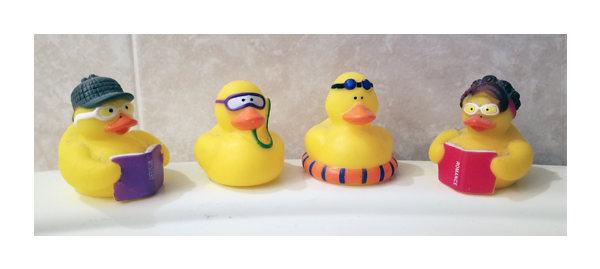 Four rubber ducks from Achieva Credit union