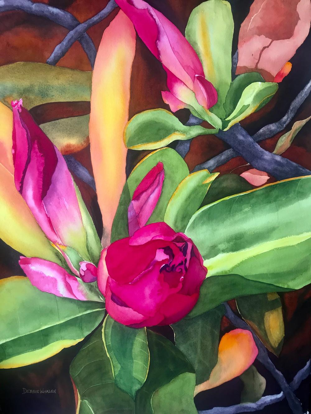 Anticipation - Watercolor Artist Debbie Whalen