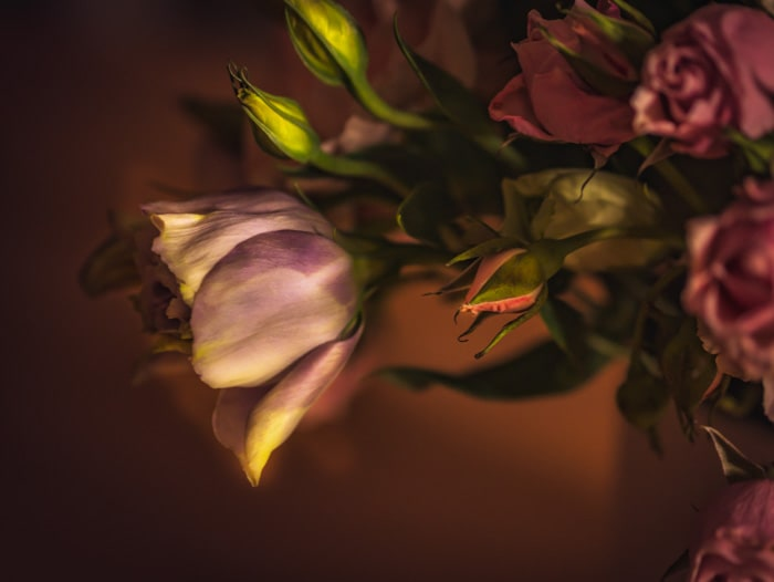 A close up of a rose in a flower arrangement