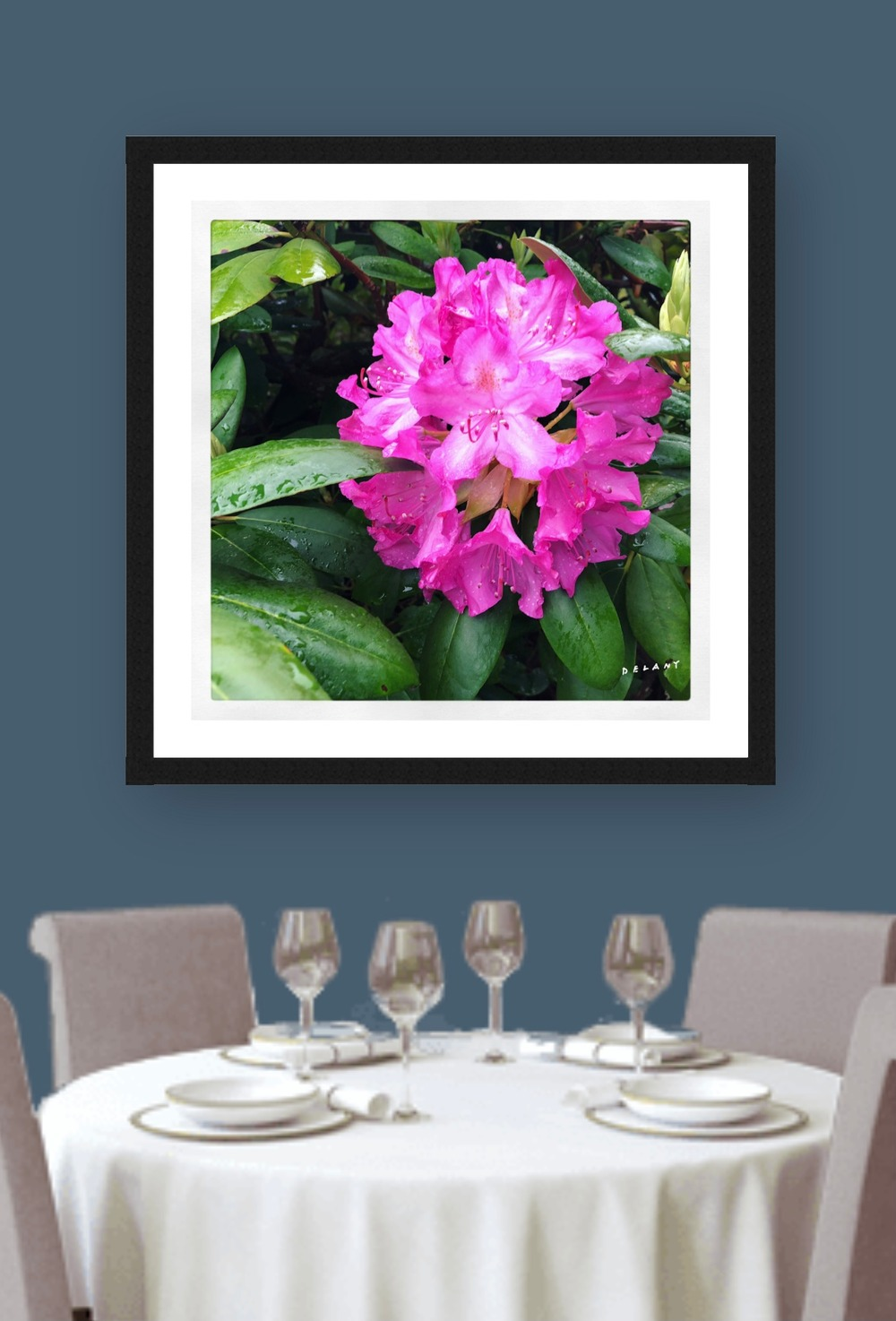 rhododendron prints