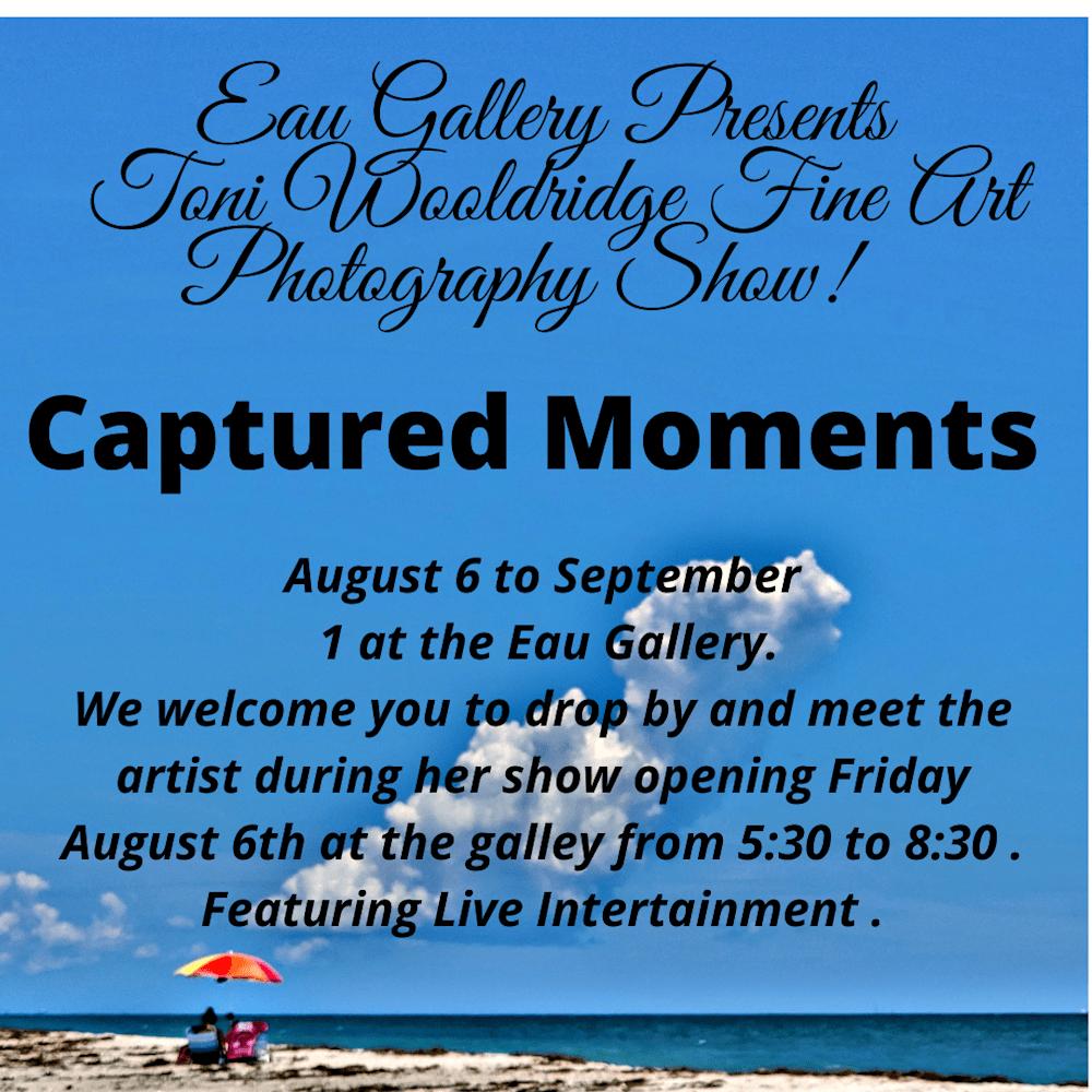 Captured Moments by Toni Wooldridge