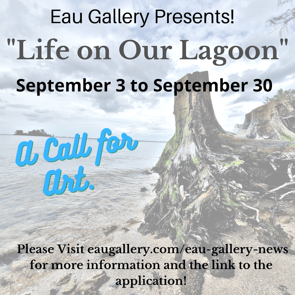 Life on Our Lagoon - a call to art
