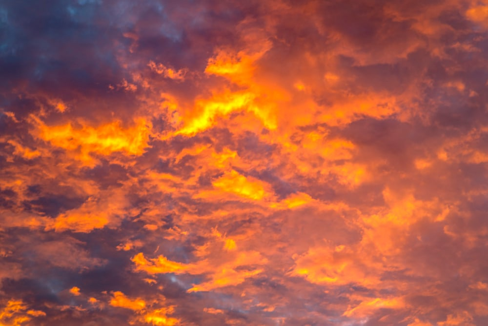 Fiery orange clouds form a gorgeous Atlanta sunrise