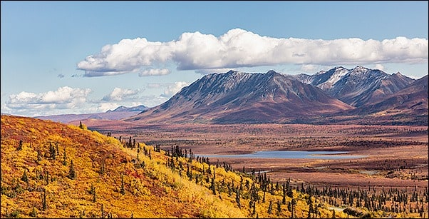Glacier View Fall Workshop