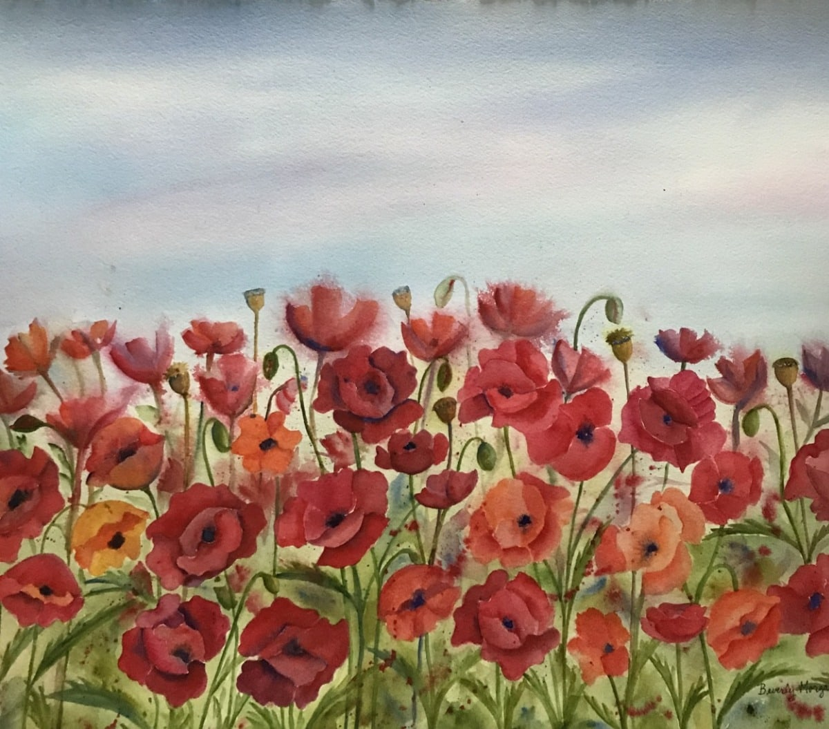POPPIES FOREVER