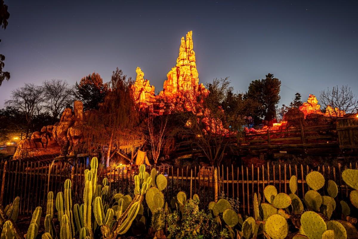 Big Thunder Cactus