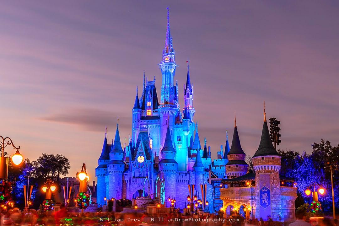 Disney World Gallery