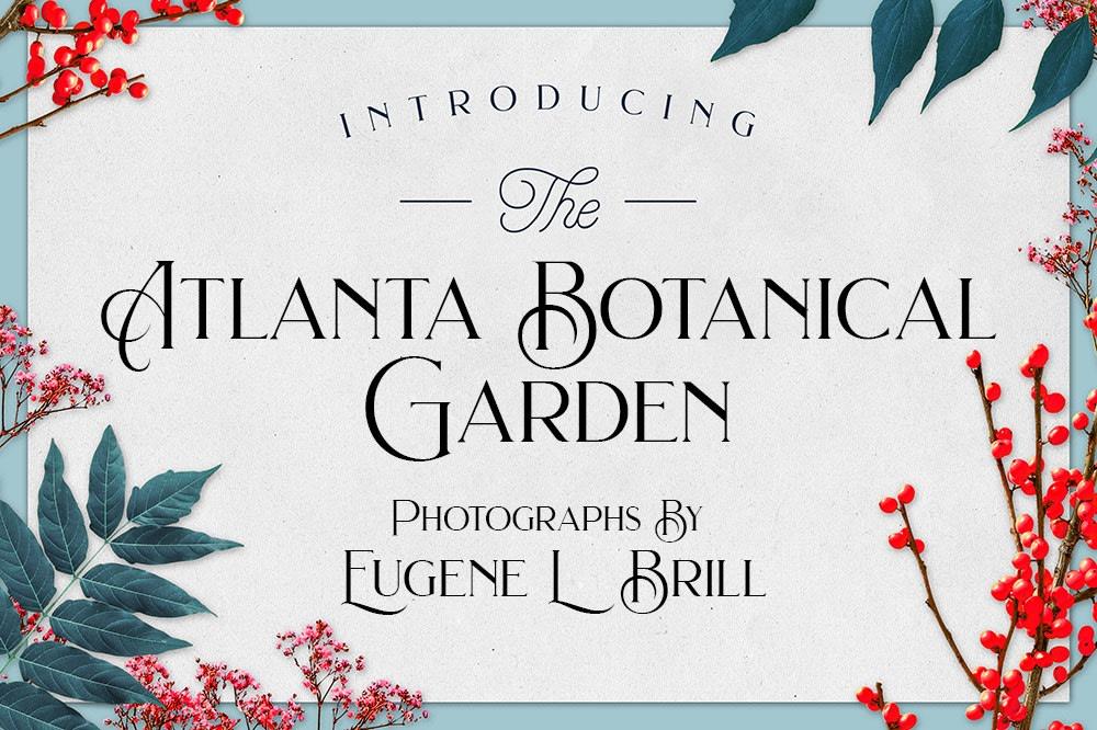 Atlanta Botanical Gardens by Eugene Brill