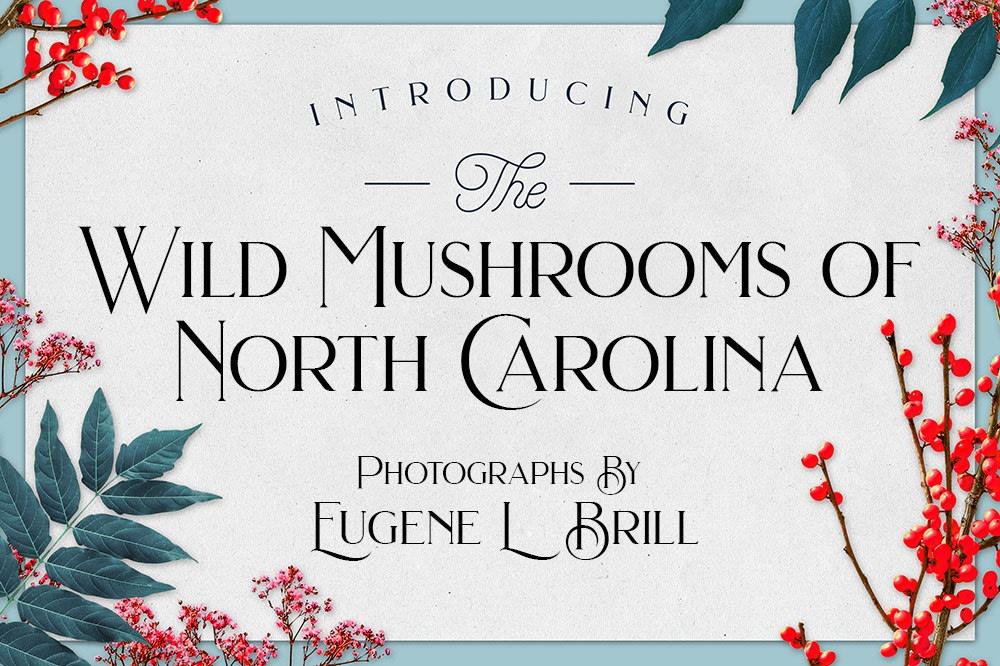 Wild Mushrooms of North Carolina by Eugene Brill