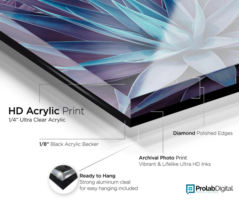 Acrylic Print Prolab Digital