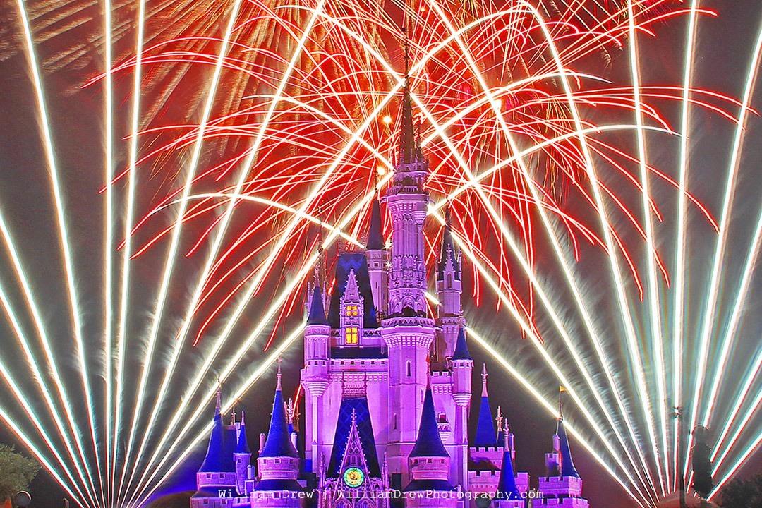 Cinderella's Castle Wishes