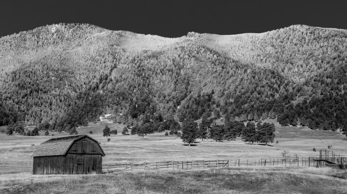 Frosty Colorado Morning