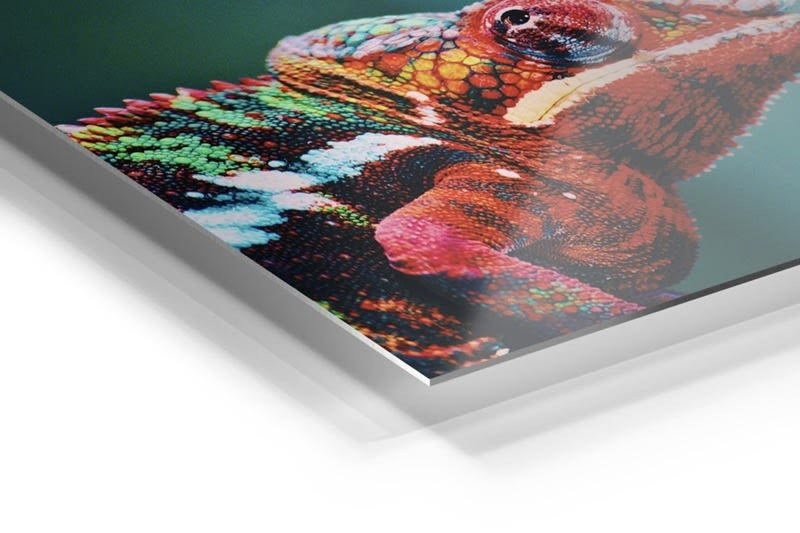 Infused Aluminum Surface Option at Prolab Digital Photo Lab