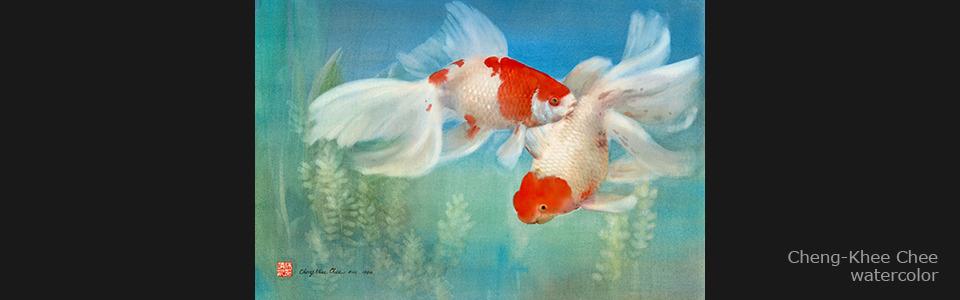 01 goldfish 90 1 30 x20    text z7alws