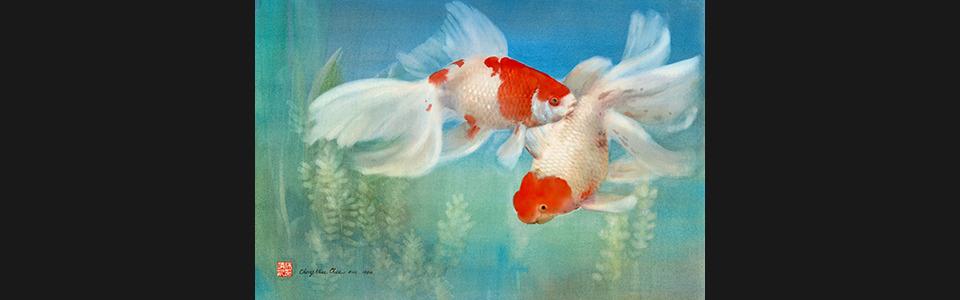 01 goldfish 90 1 30 x20  uiwlcf