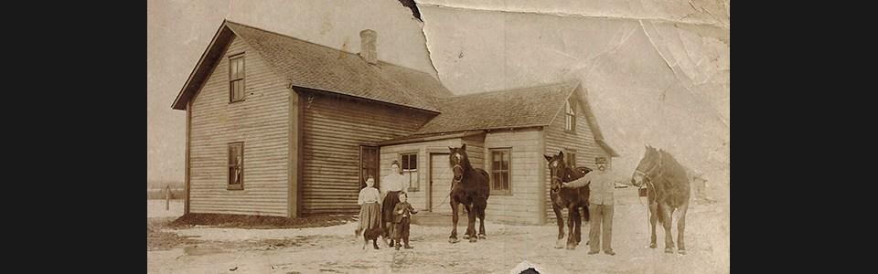 House_horses_mcfisx
