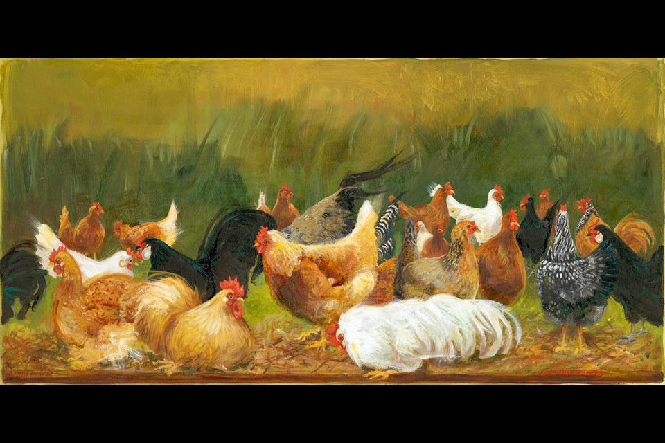 Chickens 9 x 18 qji4th