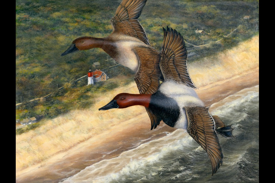 Duck stamp 18 x 24 final eaty0j