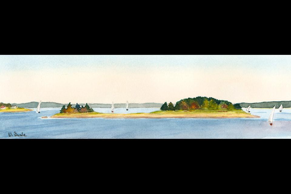 Ram island 11.875 x 3.50 final ltzipa