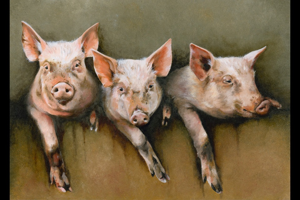Three litle pigs 20x28 final rrby0g