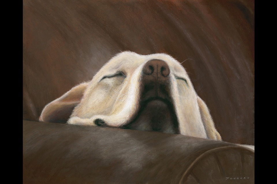 Marley 16x20 final ppxkh3