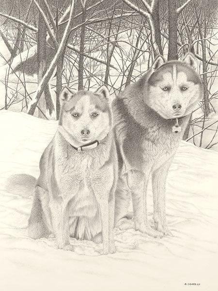 Huskies umiynh