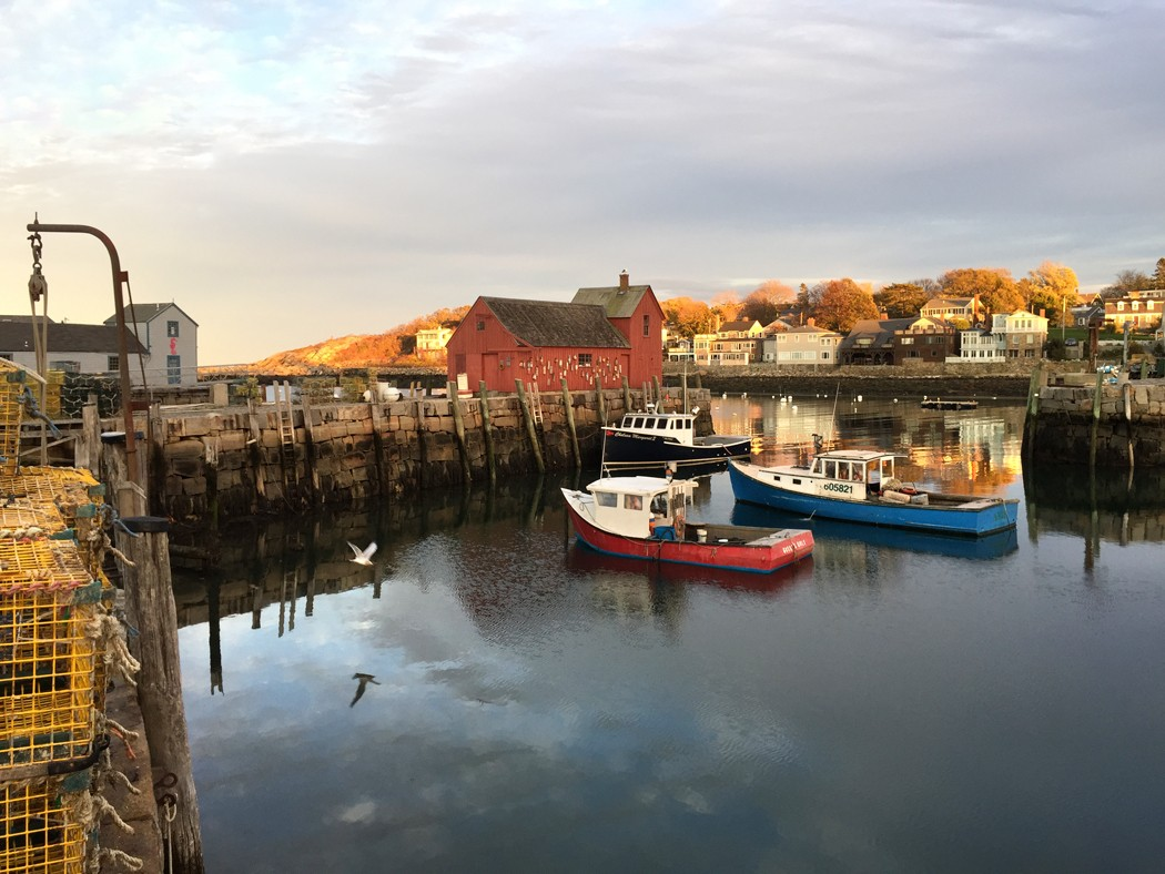 Rockport_harbor-motif__1-gull-lobster_boats-headlands_vmf5pk