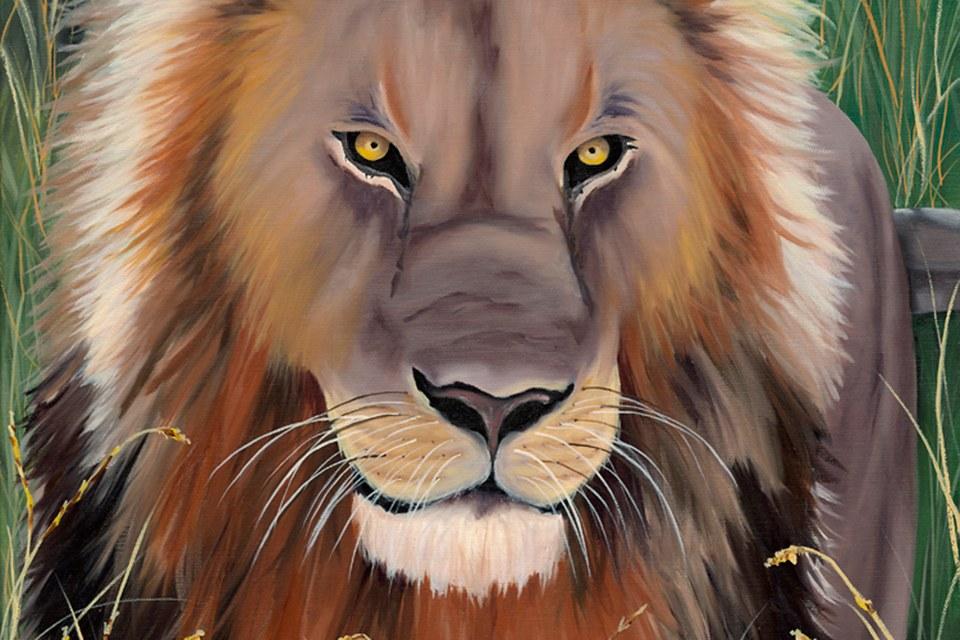 Terrisdavis lion 960x640 kif1mz