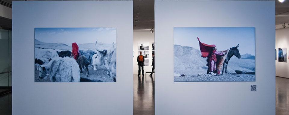 Slide_exhibition_0003_milk_017_vo7zwh